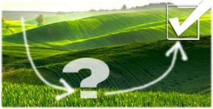 За 20 років середня врожайність пшениці в Україні зросла на 44% - USDA