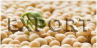 Экспорт сои из Украины: Итоги 1-го квартала 2016/17 МГ, Часть I