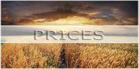 Україна і світ - ціни на зернові та олійні: Огляд тижня 24.07-28.07.2017